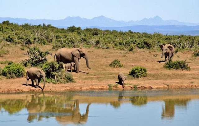 Afrika Kıtası İkiye Ayrılıyor...
