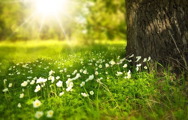 yaz mevsimi